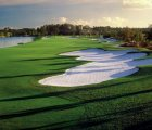 Ritz-Carlton Golf Club